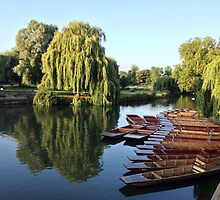 Punts in the Morning by Claire Elford