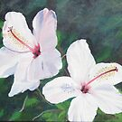 Hibiscus Flowers!  Oil on Canvas, 30 x 30 cm.  by Rita Blom