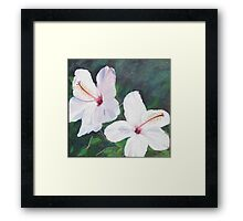 Hibiscus Flowers!  Oil on Canvas, 30 x 30 cm.  Framed Print
