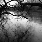 Frozen Lake  black and white photographic version by jenny meehan