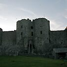 HARLECH CASTLE. by ccrcats