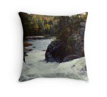 Ragged Falls Throw Pillow