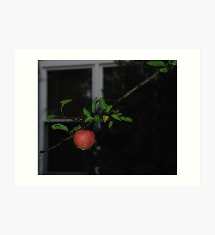 forbiden fruit----- have a bite????????? Art Print