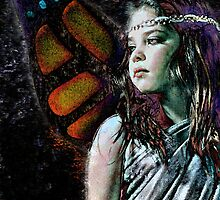 Butterfly Dreams by Rachel Leigh