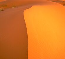 Sahara Dawn by Skip Hunt