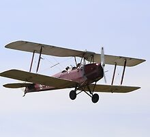 Tiger Moth in flight by Stylen