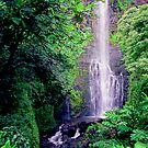 Wailua Falls Maui  by kevin smith  skystudiohawaii