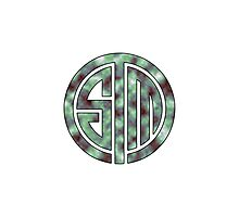 TSM Cloudy Green Sea Photographic Print