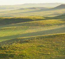Grasslands National Park 2007 by prairielight
