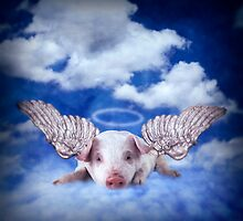 This little piggy went to heaven by Kurt  Tutschek