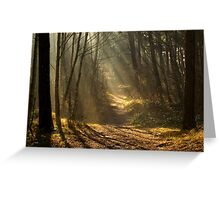 In the Stillness of the Forest Greeting Card