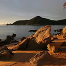 Abel Tasman Sunrise by ardwork