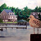 Bird's Eye View by Jim Phillips