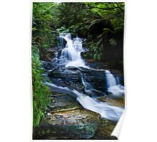 Blue Mountains Attractions - The Leura Cascades Poster