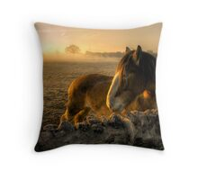 Sunrise Over Inquisitive Eyes Throw Pillow