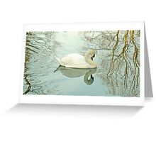 A Mute Swan On York's River Ouse Greeting Card