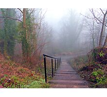 Steps in the Fog Photographic Print