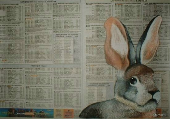 The Riverine Rabbit - Endangered Species Project by Cherie Roe Dirksen