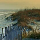 Sand Dunes of Tybee Island by Julie's Camera Creations <><