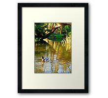 Under The Tree Branch Framed Print