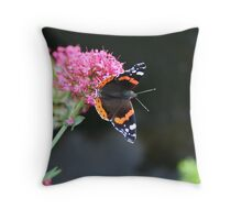Butterfly Briefly Seen at Sneem Throw Pillow