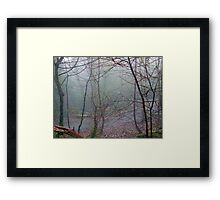 Foggy Glen Framed Print