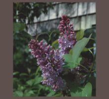 0028 - HDR Panorama - Lilac 1 Baby Tee