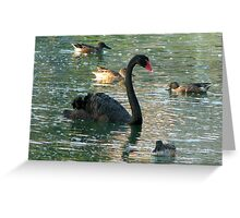 Swan with Ducks Greeting Card