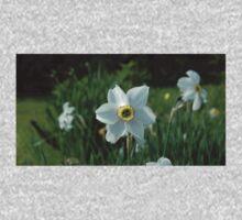 0030 - HDR Panorama - Dafodil 1 Baby Tee