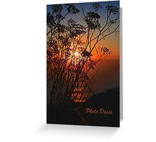 Sunset flower Greeting Card
