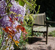 Gardenbench. by Nina Elise Vossen