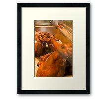 This little piggy... Framed Print