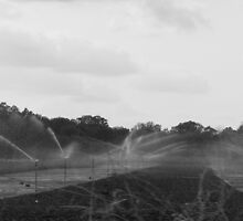 Water Sprinklers by rissalin
