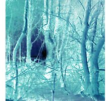 Shades of Blue Photographic Print