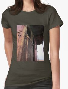 All the colors of decay Womens Fitted T-Shirt