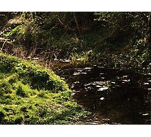 so I flow... Photographic Print