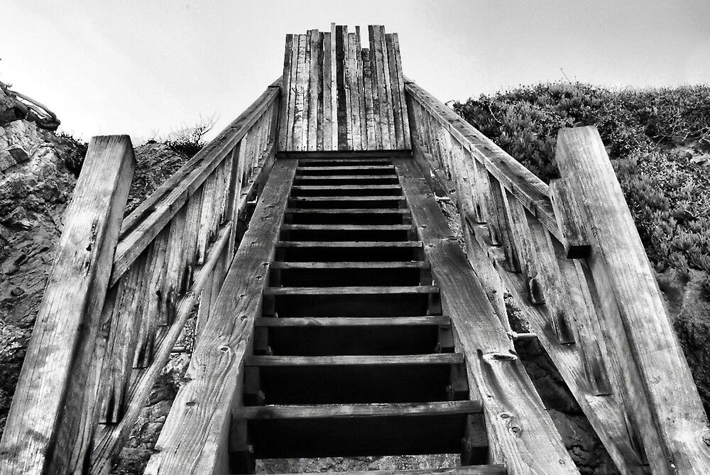 Stairs by Mariann Kovats