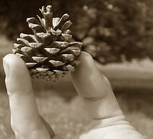 'Behold The Mighty Pinecone' by CinB