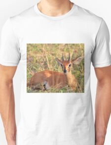 Steenbok Ram - Still Instinct T-Shirt