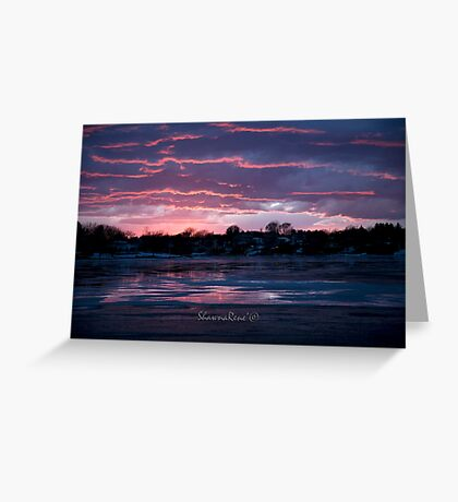 Sky-blue pink sunset over the beach! Greeting Card