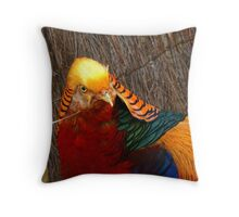Bright & Beautiful - Golden Pheasant - NZ - Invercargill Throw Pillow