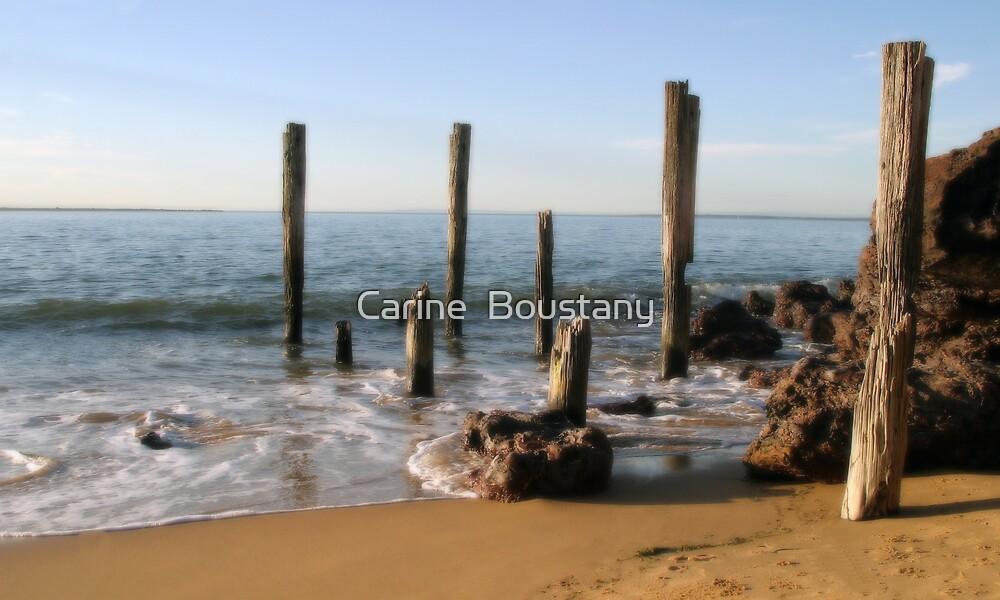 Phillip Island Beach by Carine  Boustany