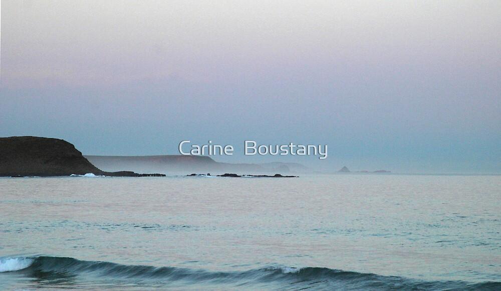 Midnight Velvet by Carine  Boustany