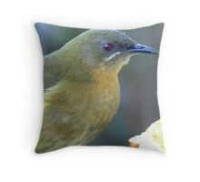 Bellbird close up! - New Zealand Throw Pillow