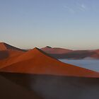 The Desert - Namibia by swanny