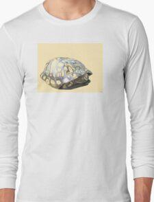 Box Turtle Long Sleeve T-Shirt