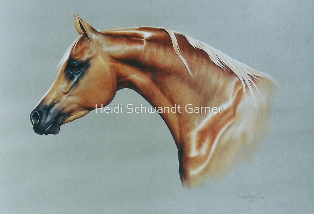 Arabian by Heidi Schwandt Garner