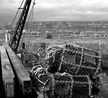 Harbourside, North Berwick, Scotland by fenster