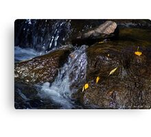 Rocky Mountain River Relaxation Canvas Print