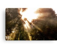 Light triumphant Canvas Print